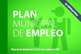 XII Plan de Empleo